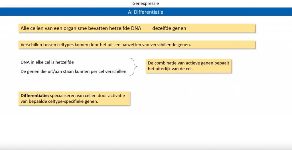 biologie genexpressie